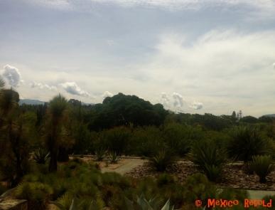 Botnical Gardens