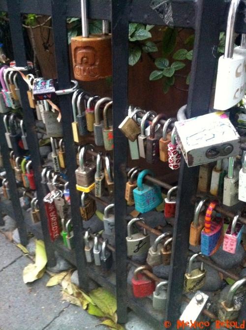 Locks of love 3
